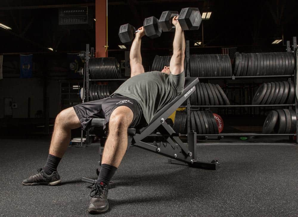 incline dumbbells on rogue bench